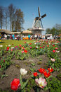 Free Beautiful Garden Stock Image - 4742551