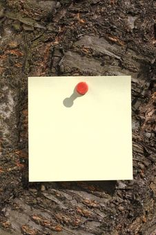 Free Sticky Note On A Tree Royalty Free Stock Images - 4740339