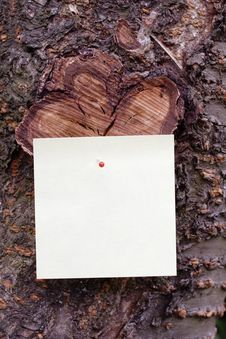 Free Sticky Note On A Tree Royalty Free Stock Photo - 4740395