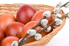 Free Easter Eggs In A Basket Royalty Free Stock Photos - 4741138