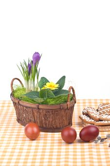 Free Easter Still-life With Eggs Royalty Free Stock Photo - 4741265