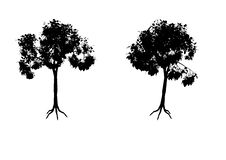 Free Tree Silhouettes Royalty Free Stock Photography - 4741607