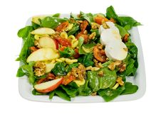 Free Fresh And Healthy Salad Royalty Free Stock Photography - 4742697