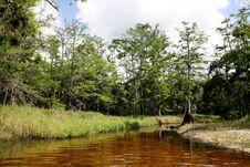 Free Creek Stock Image - 4742931