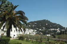 Free Capri Stock Image - 4744161