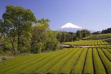 Free Mt Fuji Dg-29 Stock Photos - 4744663