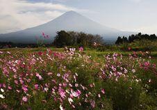 Free Mt Fuji Dg-28 Stock Photos - 4744673