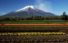 Free Mt Fuji Dg-22 Stock Image - 4744691