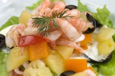 Free Prawn Salad. Royalty Free Stock Images - 4744939