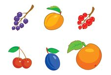 Free Summer_berries_icon_set Royalty Free Stock Photography - 4745377