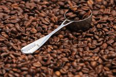 Free Coffee And Spoon Royalty Free Stock Images - 4745489
