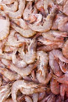 Free Pile Of Shrimps Royalty Free Stock Photography - 4745777