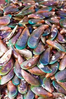 Free Seafood At Marketplace Royalty Free Stock Photo - 4745785