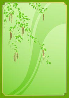 Free Birch_frame Royalty Free Stock Photos - 4746308