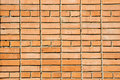 Free Brick Wall Royalty Free Stock Images - 4753709