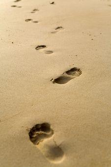 Free Sand Foot Prints Royalty Free Stock Photo - 4753265