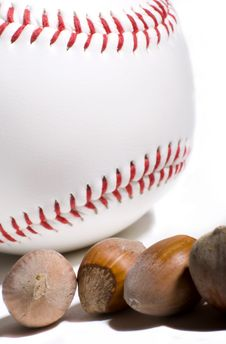 Are You Nut About Baseball  Stock Images