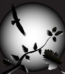 Free Bird And Flower Illustration Stock Image - 4755691