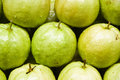Free Guava Fruit Royalty Free Stock Images - 4765939