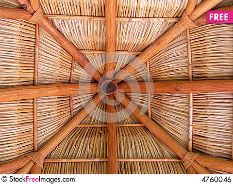 Charming Palapa Roof