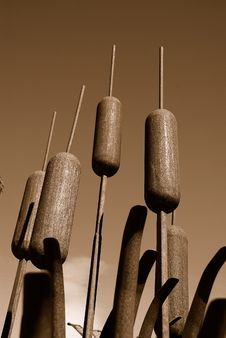 Free Metal Sculptured Cattails Royalty Free Stock Photography - 4760807