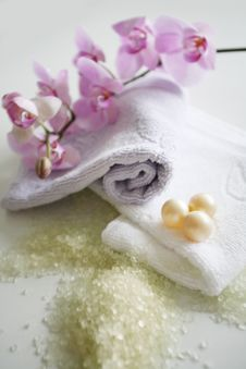 Free Bath Accessories Royalty Free Stock Images - 4761529