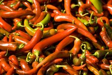 Free Red Chilly Peppers Royalty Free Stock Images - 4762369