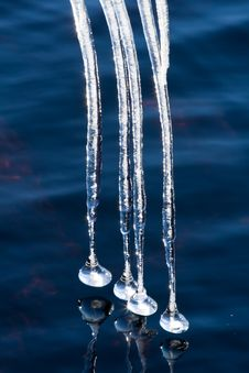 Free Icicles On A Lake Royalty Free Stock Image - 4762776