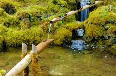 Free Wooden Pipe In The Pond Royalty Free Stock Photos - 4763698