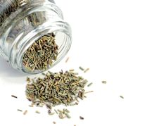 Free Crushed Rosemary Royalty Free Stock Photos - 4764528