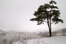 Winter Melancholy Stock Photography