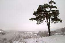 Free Winter Melancholy Stock Photography - 4770212