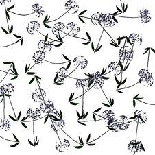 Free Dandelion Pattern Stock Photos - 4771373
