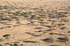 Free Landscape On Socotra Island Stock Photography - 4772132