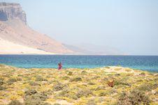 Free Beautiful Bay On Socotra Island Stock Image - 4772231