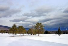 Free Bretton Woods, New Hampshire Royalty Free Stock Images - 4773979