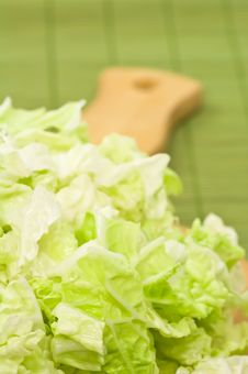 Free Lettuce Stock Images - 4778574