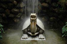 Free Stone Dragon-tortoise Stock Images - 4778934