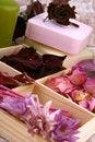 Free Spring Aromatherapy Royalty Free Stock Photos - 4789098