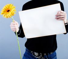 Free Man Takes Placard And Flower Stock Photo - 4781530