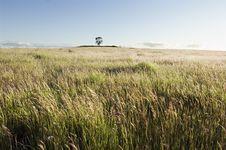 Free Pasture Field Stock Photo - 4784070