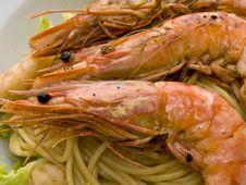 Free Shrimps Stock Image - 4786151