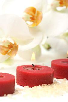 Free Aromatherapy Royalty Free Stock Photos - 4787218