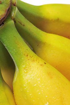 Free Bananas Royalty Free Stock Photography - 4788257