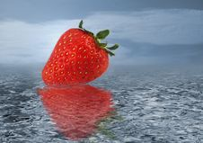 Free Strawberry On Water Stock Image - 4788631