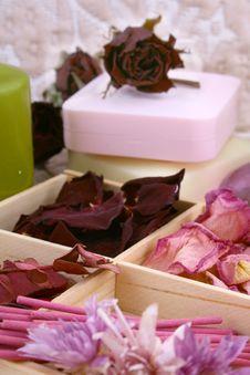 Free Spring Aromatherapy Royalty Free Stock Photography - 4788977