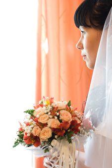 Free Enigmatic Bride Royalty Free Stock Photos - 4790108