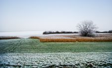 Free Winter Landscape Stock Photography - 4790172