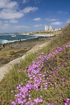 Free La Jolla Coast Line Near San Diego Stock Image - 4790381