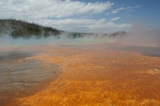 Free Yellowstone Grand Prismatic Spring Royalty Free Stock Photo - 4791445